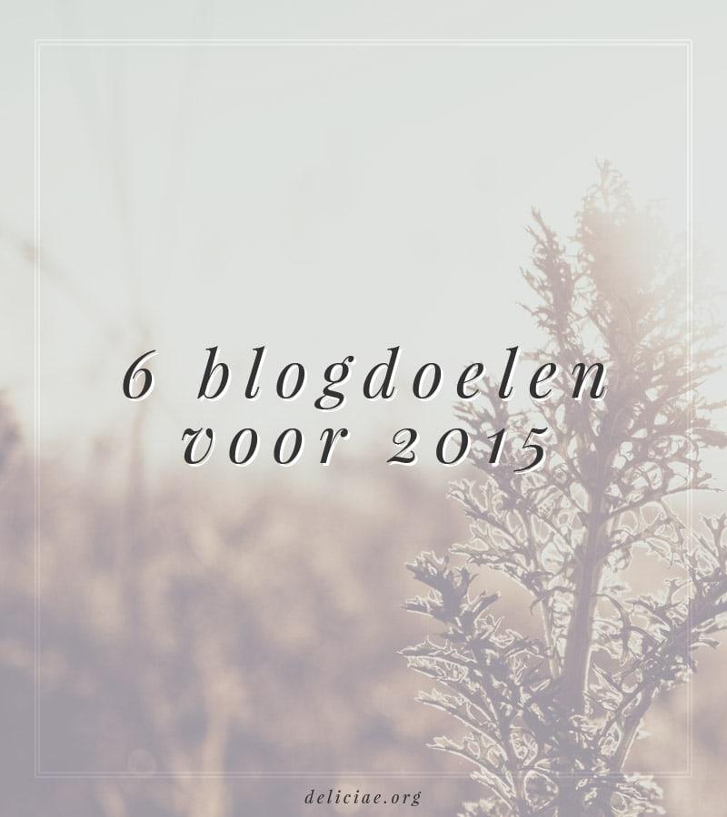 6 Blogdoelen voor 2015