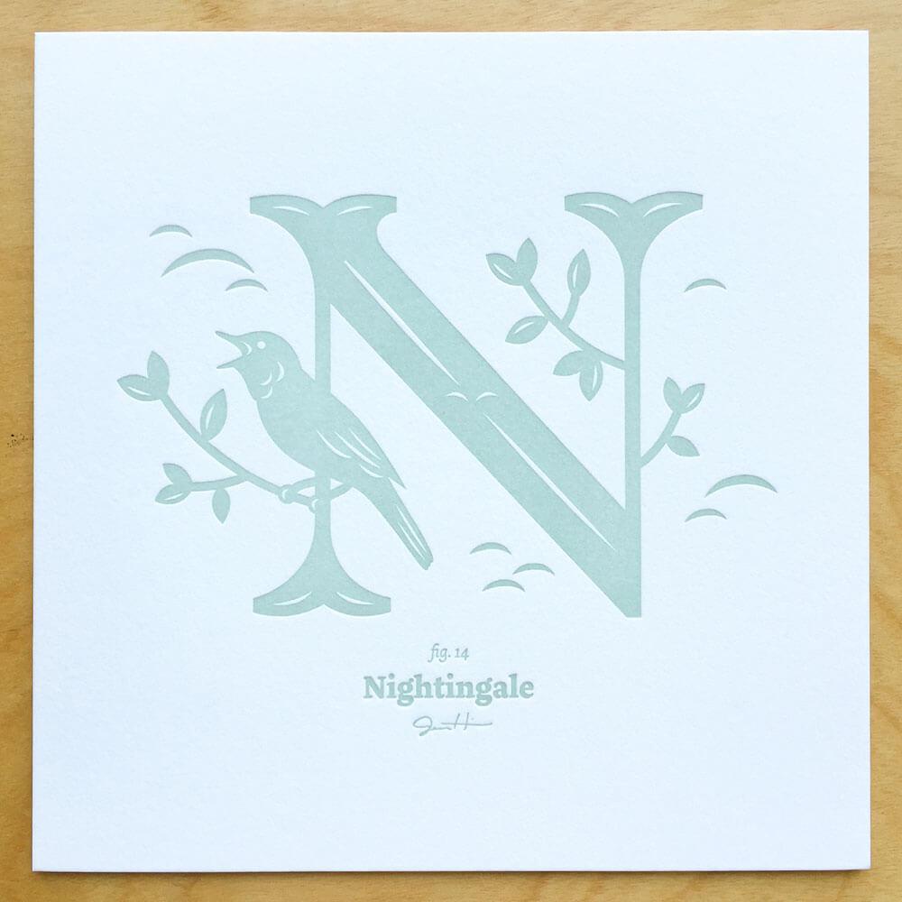Alphabirds-001