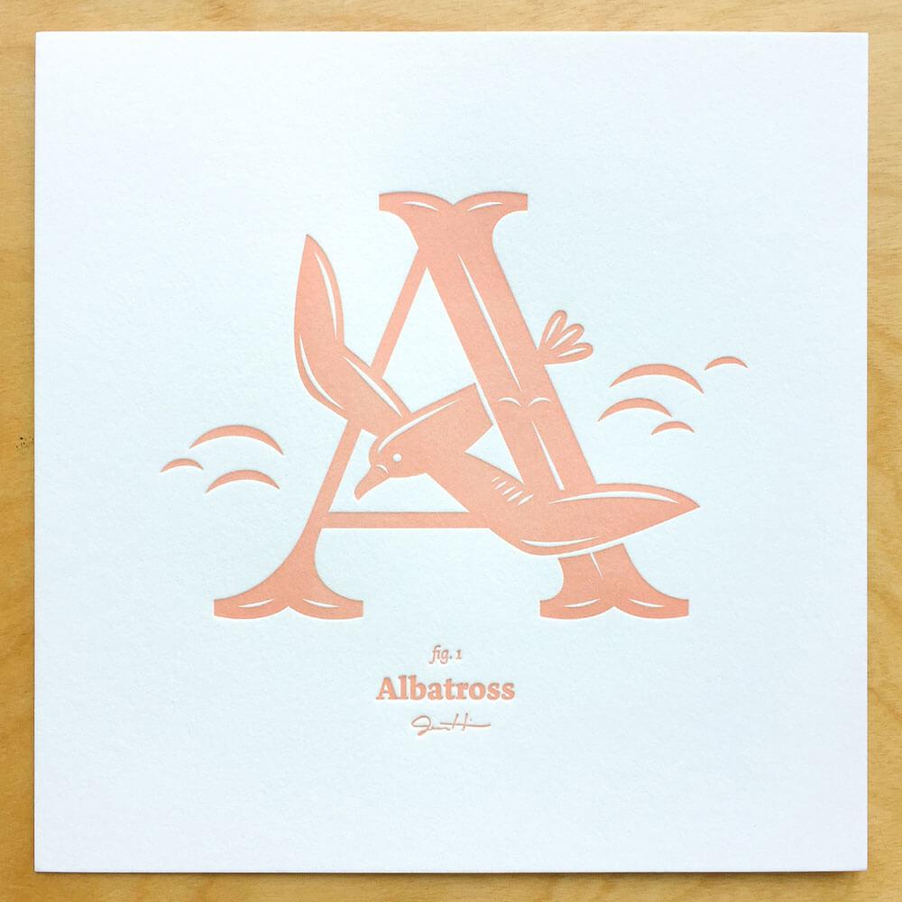 Alphabirds-003