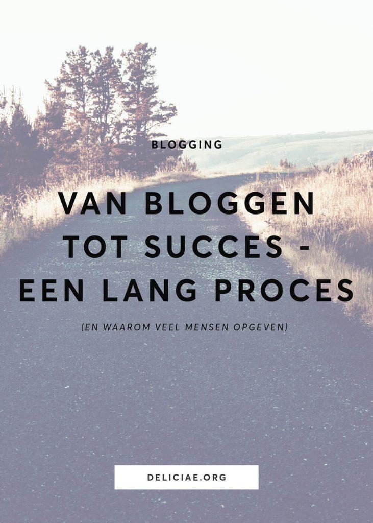 Van bloggen tot succes – een lang proces