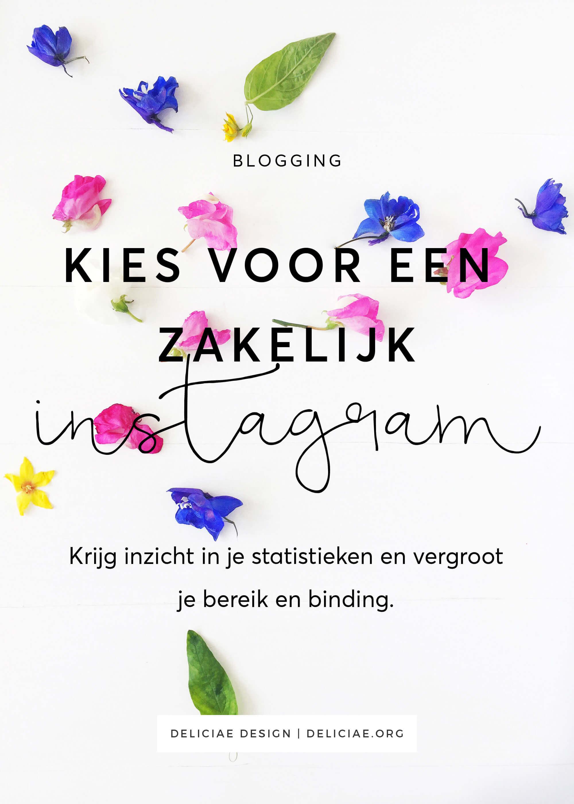instagram-zakelijk-account